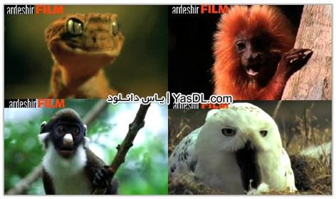 دانلود کلیپ فوق العاده خنده دار حرف زدن حیوانات   دوبله فارسی   قسمت دوم