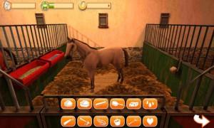 HorseWorld-3D-My-Riding-Horse-5