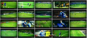 Fernando Torres All Goals 2012-2013 HD