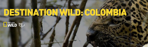 Destination-Wild-Colombia