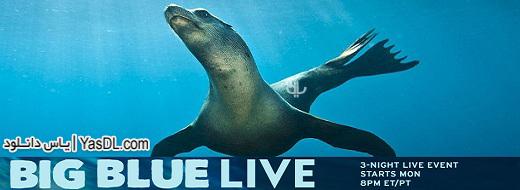 دانلود مستند Big Blue Live - زندگی آبی بزرگ