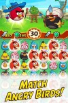 Angry Birds Fight RPG Puzzle2