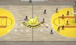 Stickman Basketball1