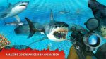 Shark Hunting1