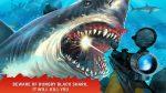 Shark Hunting2