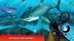 Shark Hunting4