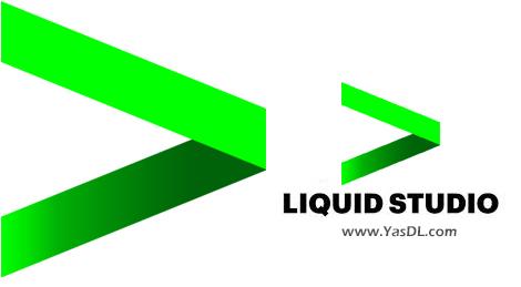 دانلود Liquid Studio 2018 16.1.7.8497 - توسعه و طراحی ساختارهای JSON و XML