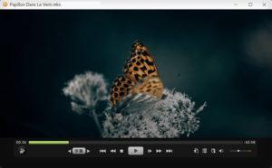 SPlayer.cover1  300x186 - دانلود SPlayer 3.7 Build 2437 - نرم افزار پخش حرفهای فرمتهای صوتی و تصویری