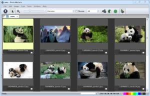 Camera Bits Photo Mechanic.cover1  300x192 - دانلود Camera Bits Photo Mechanic 6.0 Build 5820 - نرم افزار مدیریت تصاویر