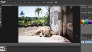 Foxit Studio Photo.cover1  300x169 - دانلود Foxit Studio Photo 3.6.6.934 - نرم افزار ویرایش حرفهای عکس