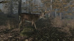 Pro Deer Hunting 2 2 300x169 - دانلود بازی Pro Deer Hunting 2 برای PC