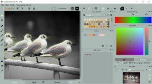 CODIJY Colorizer.cover2  300x166 - دانلود CODIJY Colorizer Pro 4.0.0 - نرم افزار رنگآمیزی تصاویر قدیمی