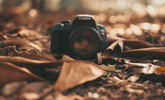 2 - از دوره های عکاسی تا دوره های تولید محتوا